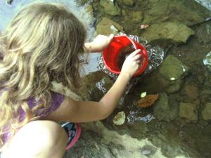 checking out aqua critters in our creek